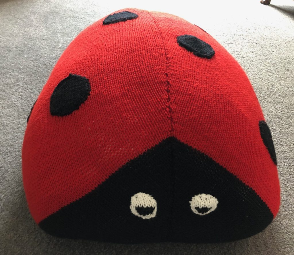 Sirdar108-28 Ladybird Cushion
